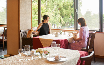 2019年【朝食付】夕食は好きな場所で食べよう♪チェックイン20時までOK!伊豆高原に休日ステイ★