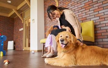 2019年【素泊まり】イン20時までOK☆愛犬と一緒に伊豆高原の大自然を楽しもう♪